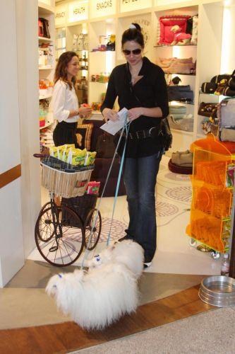 Luciana Gimenez passeia com seus cães por shopping de São Paulo (28/10/2010)