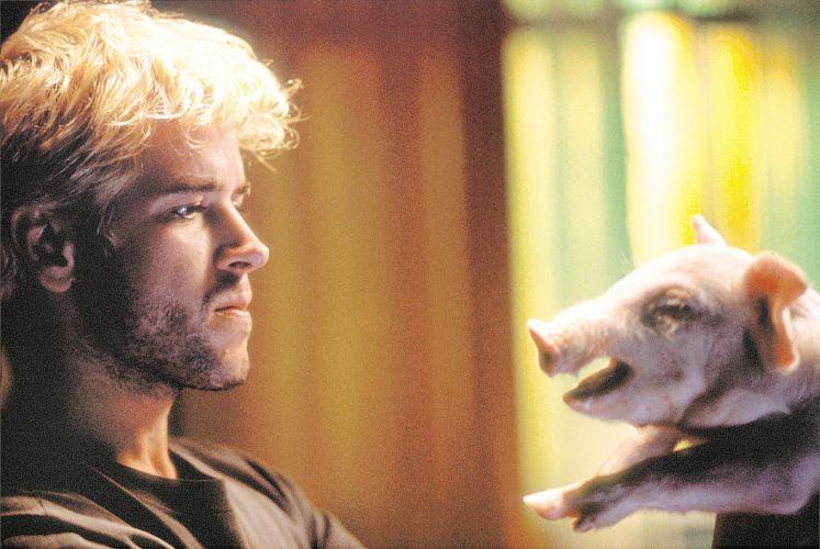 Murilo Benício com um porco, em cena do filme